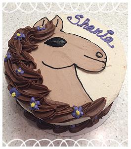 custom-cakes-bellingham02